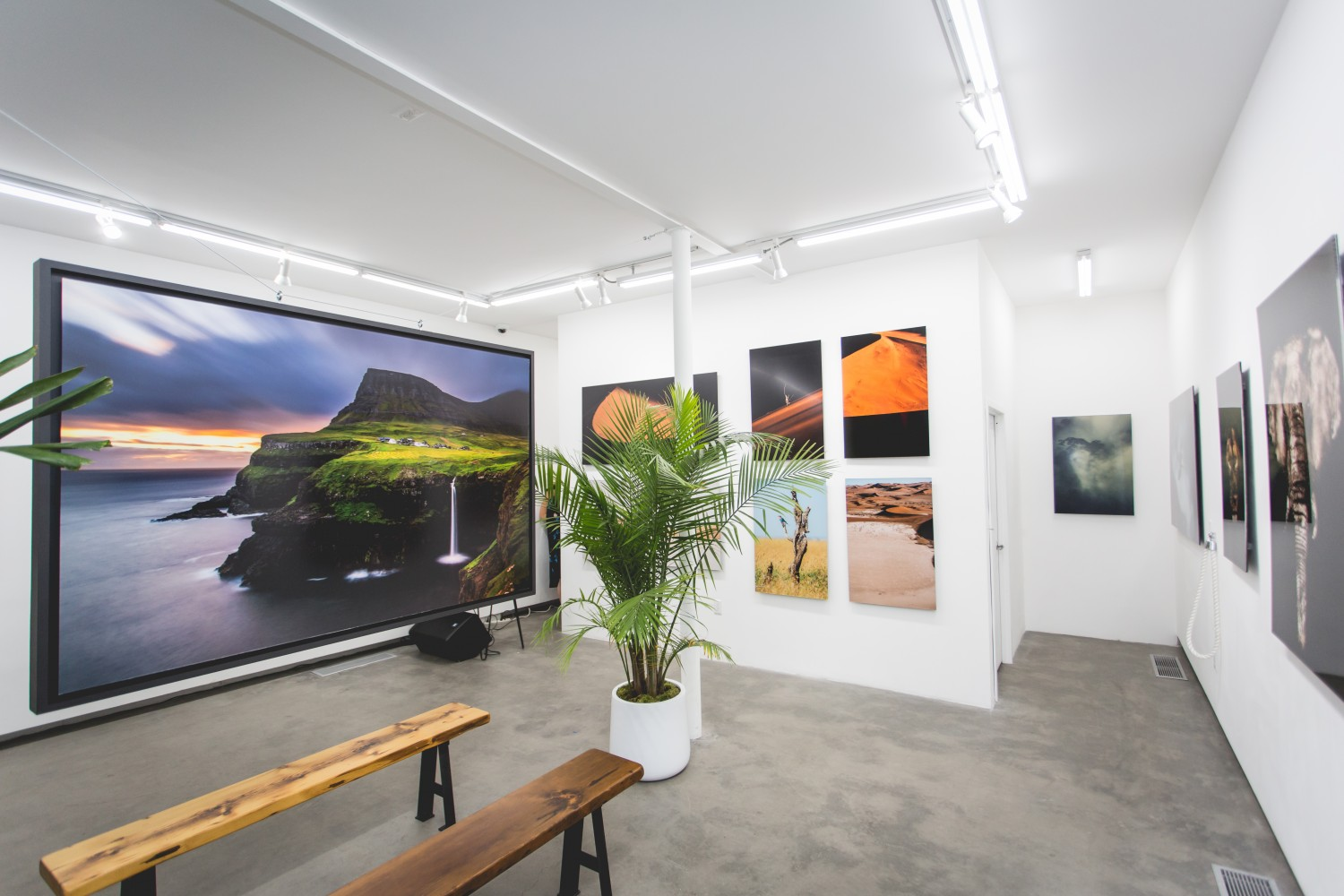 How much does a pop up shop cost? No Limits by Kourosh Keynejad Opening at Parasol Projects